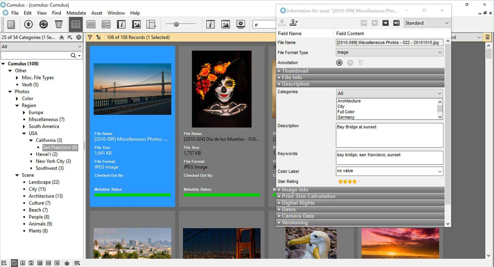 Canto Cumulus DAM Solutions - Canto Cumulus Application Client - Nextware (Los Angeles)